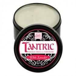Массажная свеча с феромонами - аромат белой лаванды TANTRIC WHITE LAVANDER, 113 гр