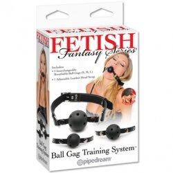 Набор из трех кляпов Ball Gag Training System